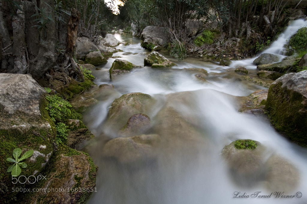 Photograph Algar II by Lidia Teruel Wizner on 500px