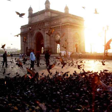 Gateway of India, Sony DSC-T500