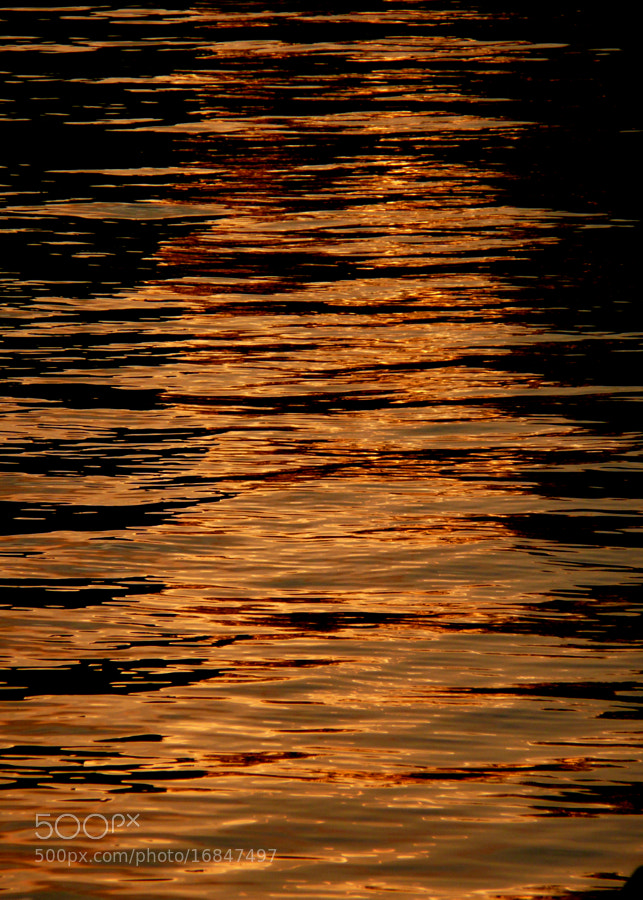 The sun was setting  in the capital of Sweden - I was there to capture the reflection of the orb on the water, but a boat disturbed the surface and caused this nice ripple effect