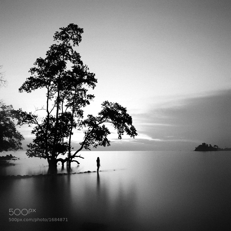Photograph Solitaire by Hengki Koentjoro on 500px