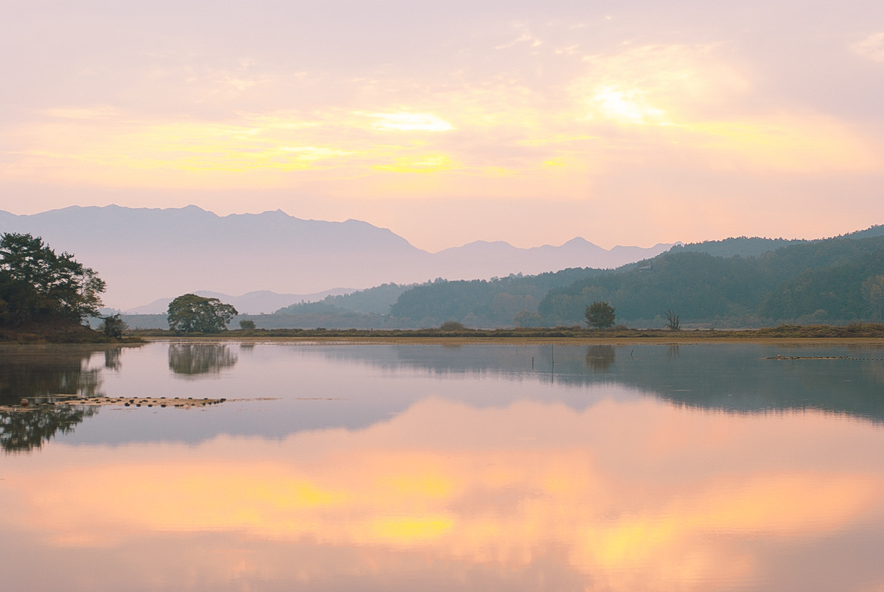 Photograph Wetlands in the morning by LEE GEON on 500px