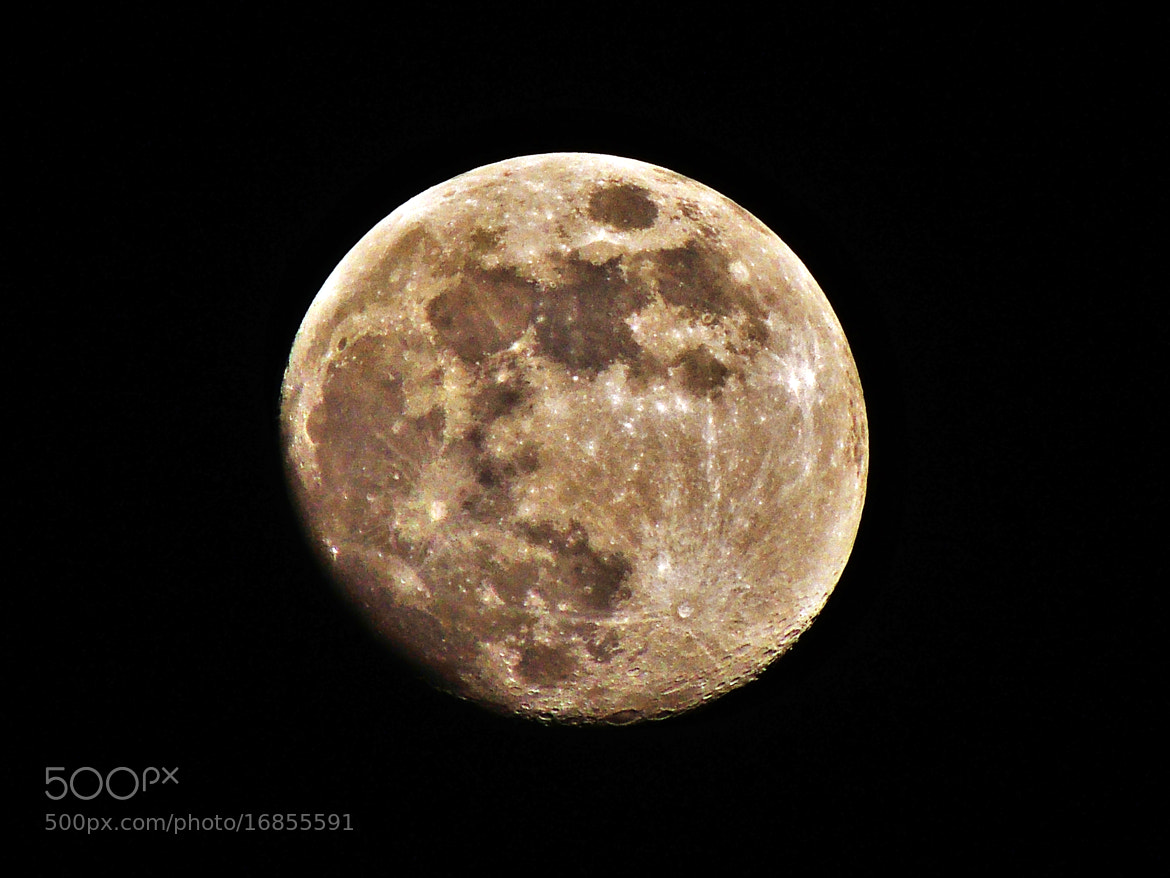 Photograph Moonraker. by Ravi S R on 500px