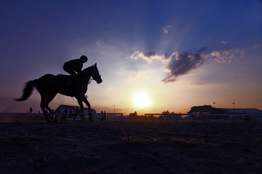 Photograph morning race by teguh santosa on 500px