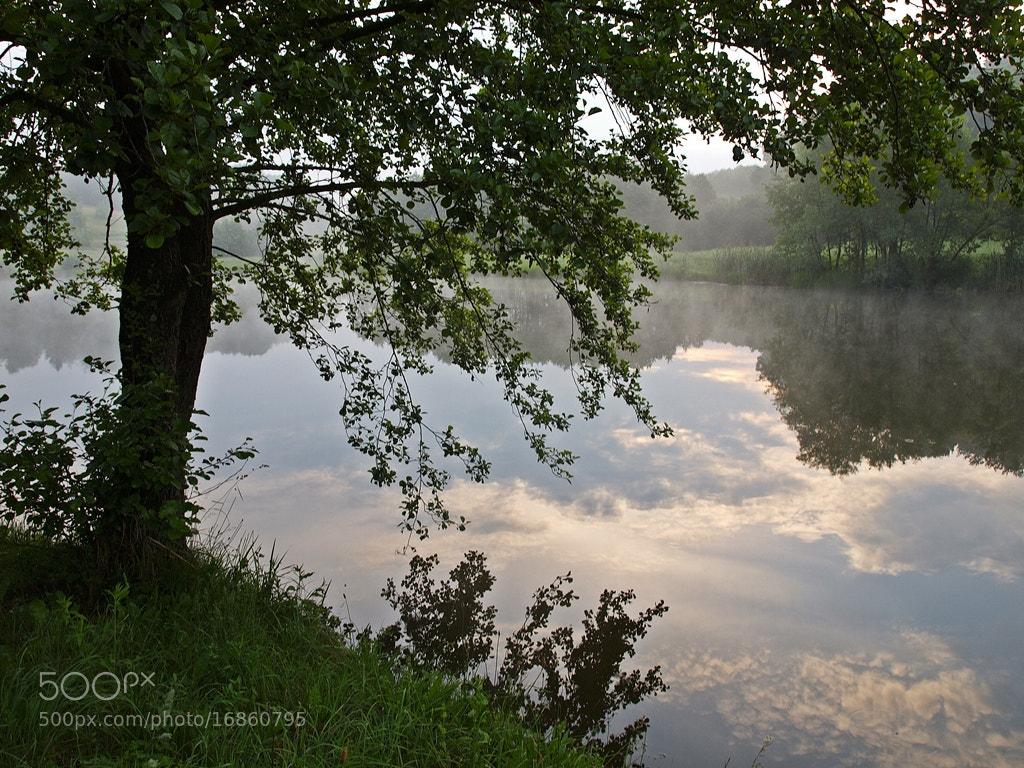 Photograph Dreamy Morning by Siniša Almaši on 500px