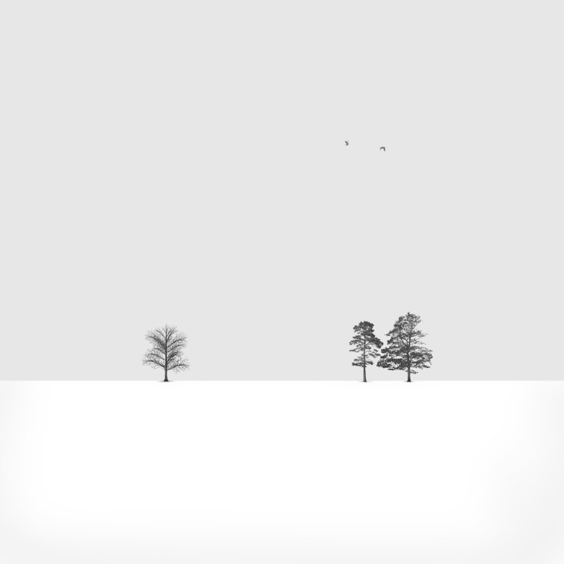 Photograph Alone... , Together... by Hossein Zare on 500px
