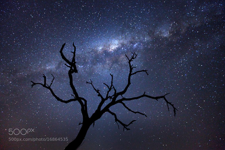 Photograph Motswari Night by Xenedis  on 500px