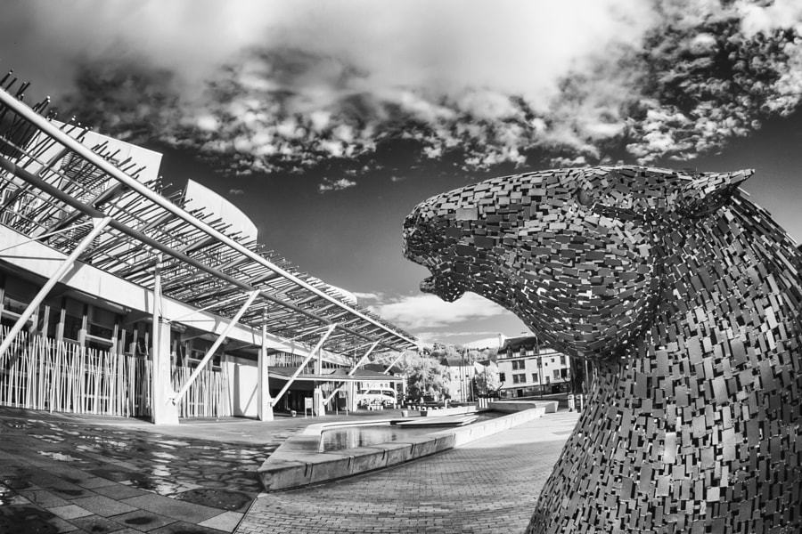 Kelpie up head at Scottish Parliament