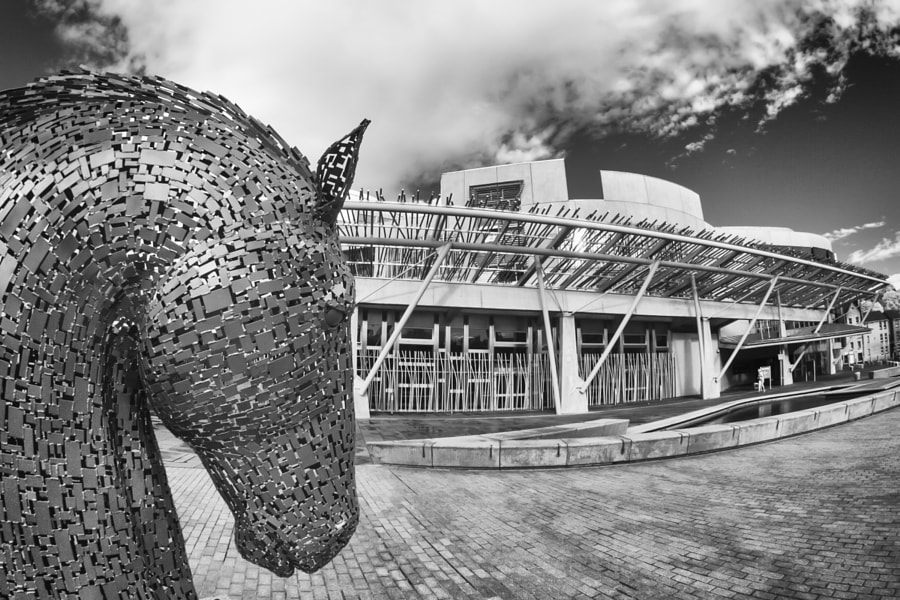 Kelpie down head at Scottish Parliament
