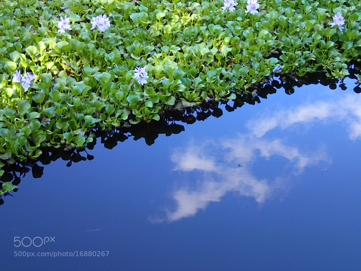 Photograph Reflections by Simon Sperling on 500px