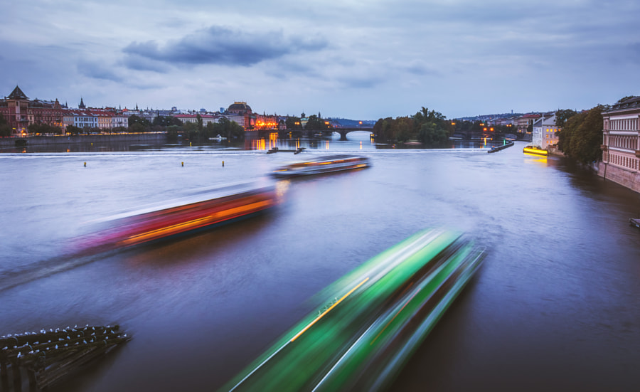 Rush hour in the Vltava II