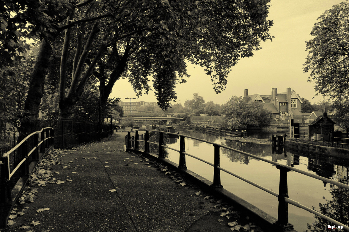 Photograph suburbs of london by Hegel Jorge on 500px