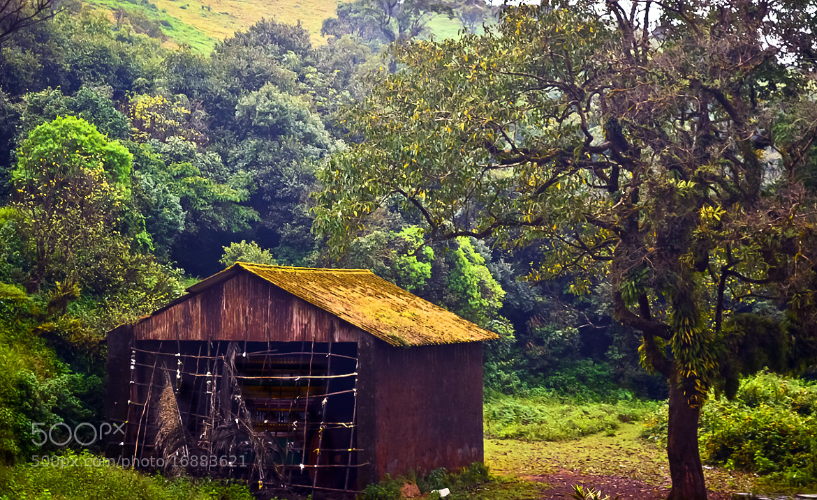 Photograph Forest Shed by Girinath G on 500px