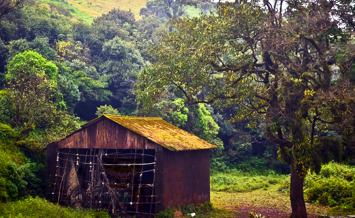 Photograph Forest Shed by Girinath.G (GG)  on 500px