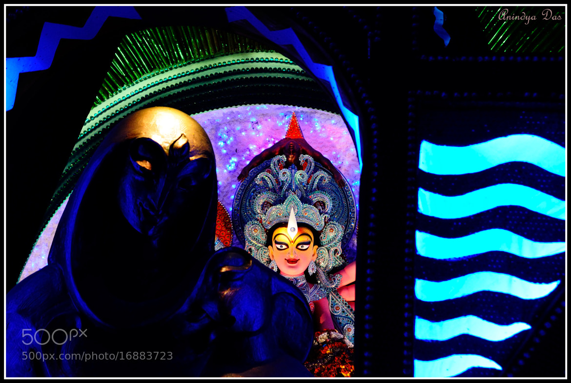 Photograph Fairy Godmother by Anindya Das on 500px