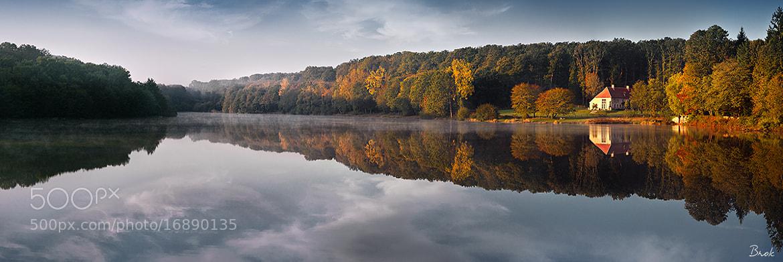 Photograph Forêt de Tronçais au petit matin by BrÖk  on 500px