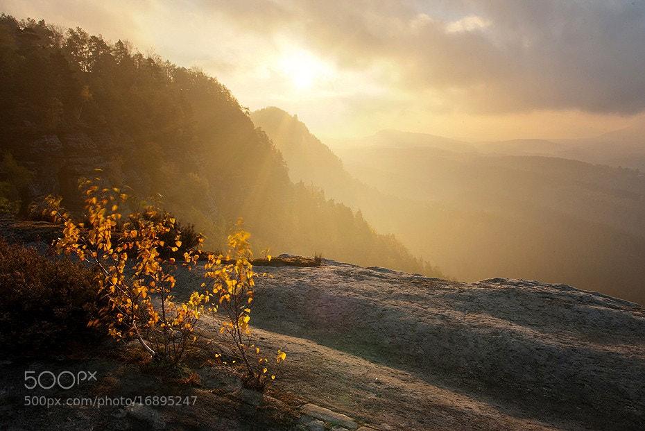 Photograph Morning in Czech Switzerland by Ondřej Jirků on 500px