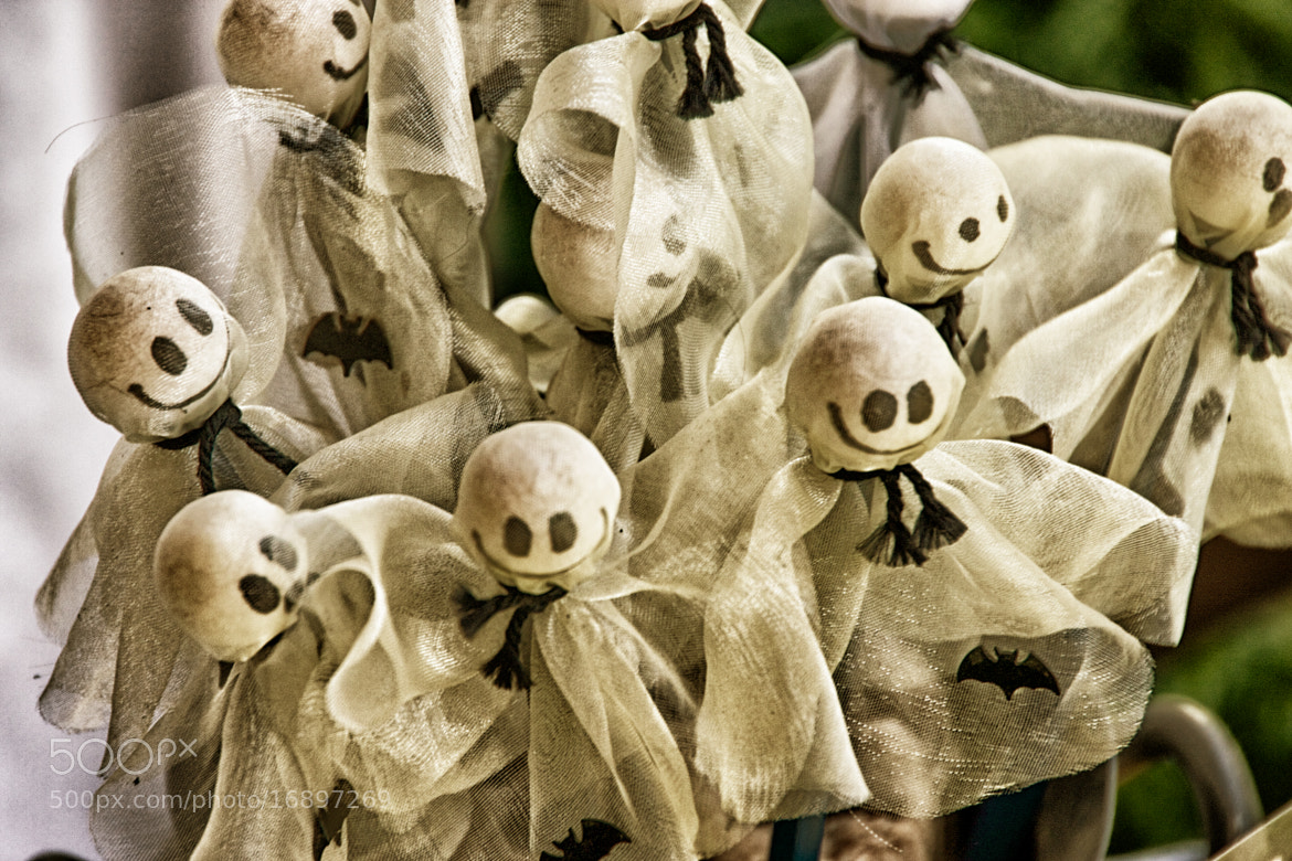 Photograph Little Spookey Ghosts by Phillipp Arnold on 500px