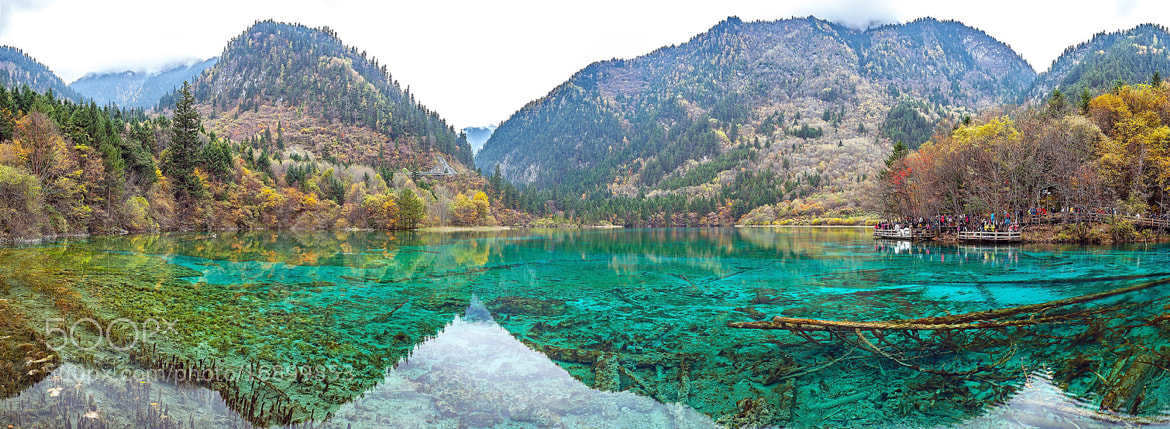 Photograph Five flowers lake panorama by Sasipa Muennuch on 500px