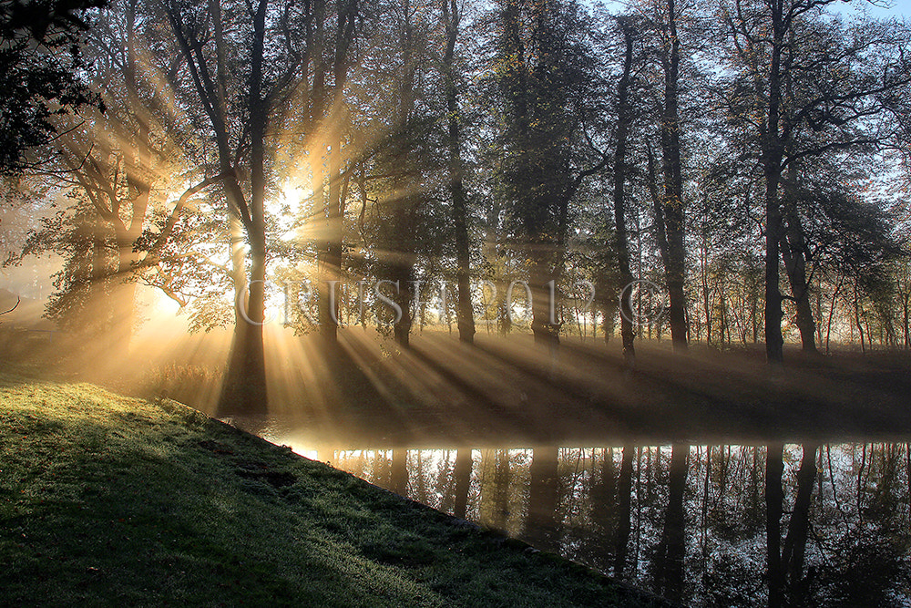 Photograph A light that shines twice as bright lasts for half the time by Martin  Crush on 500px