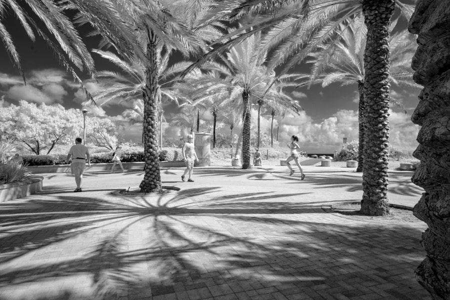 South Beach Silver IR