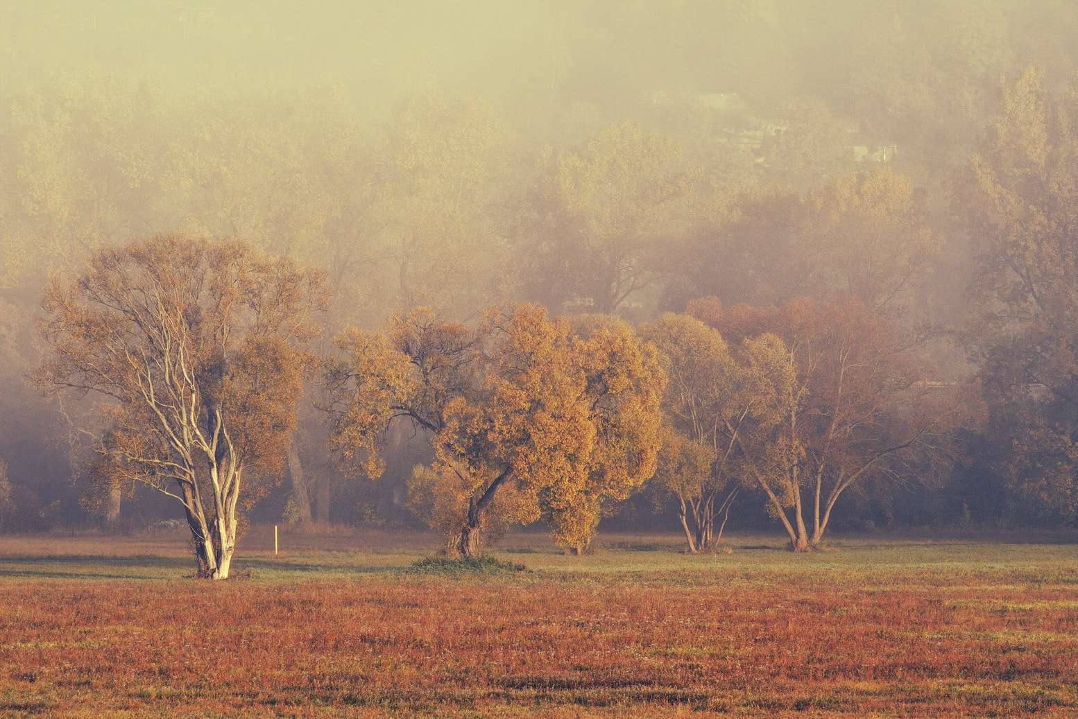 Photograph Autumn day by Harry Keller on 500px