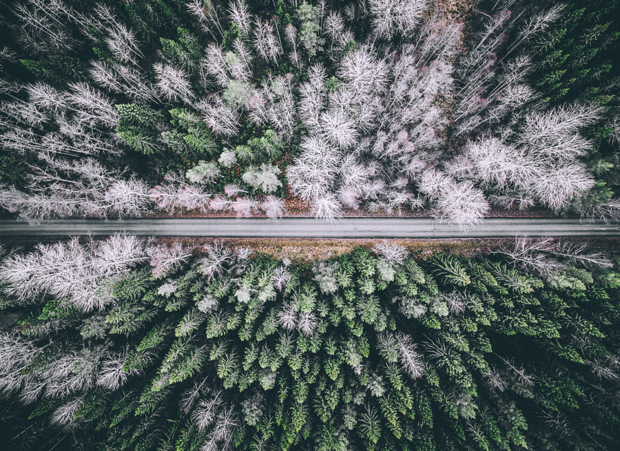 One of those roads by Tobias Hägg on 500px.com