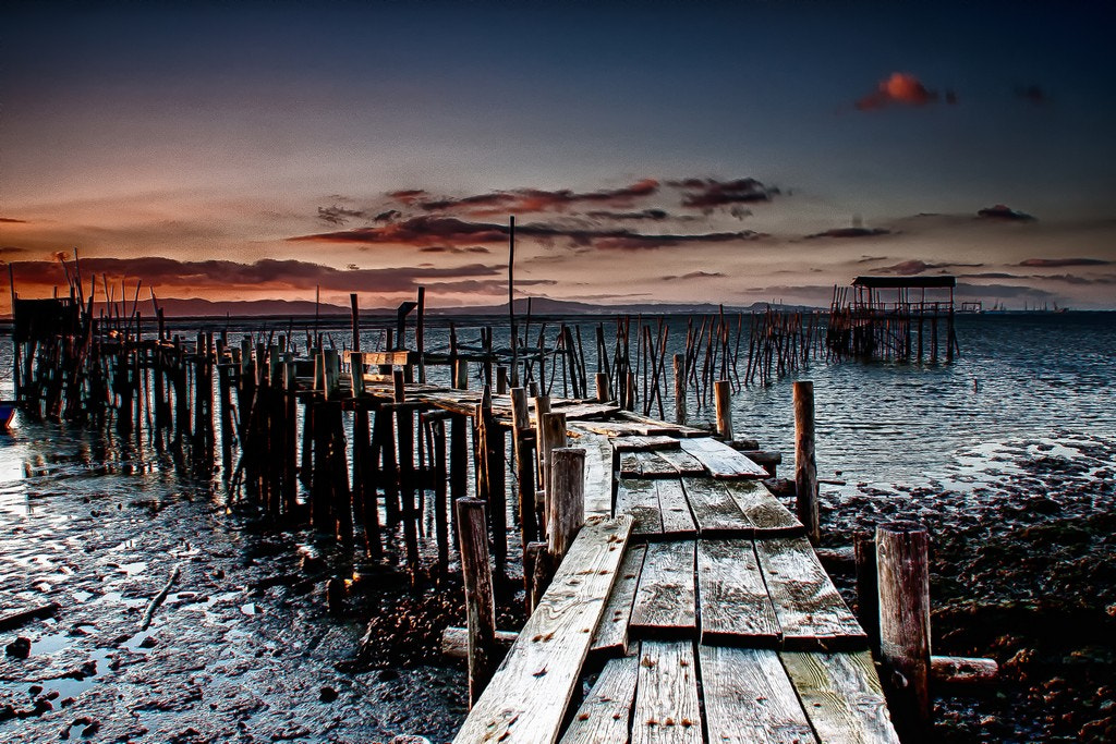 Photograph Carrasqueira II by Antonio Silva on 500px