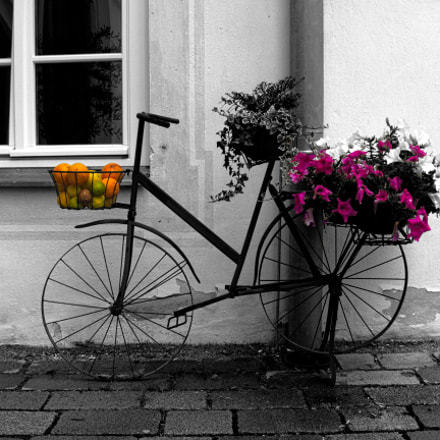 Old old bike, Canon POWERSHOT SX60 HS, 3.8 - 247.0 mm