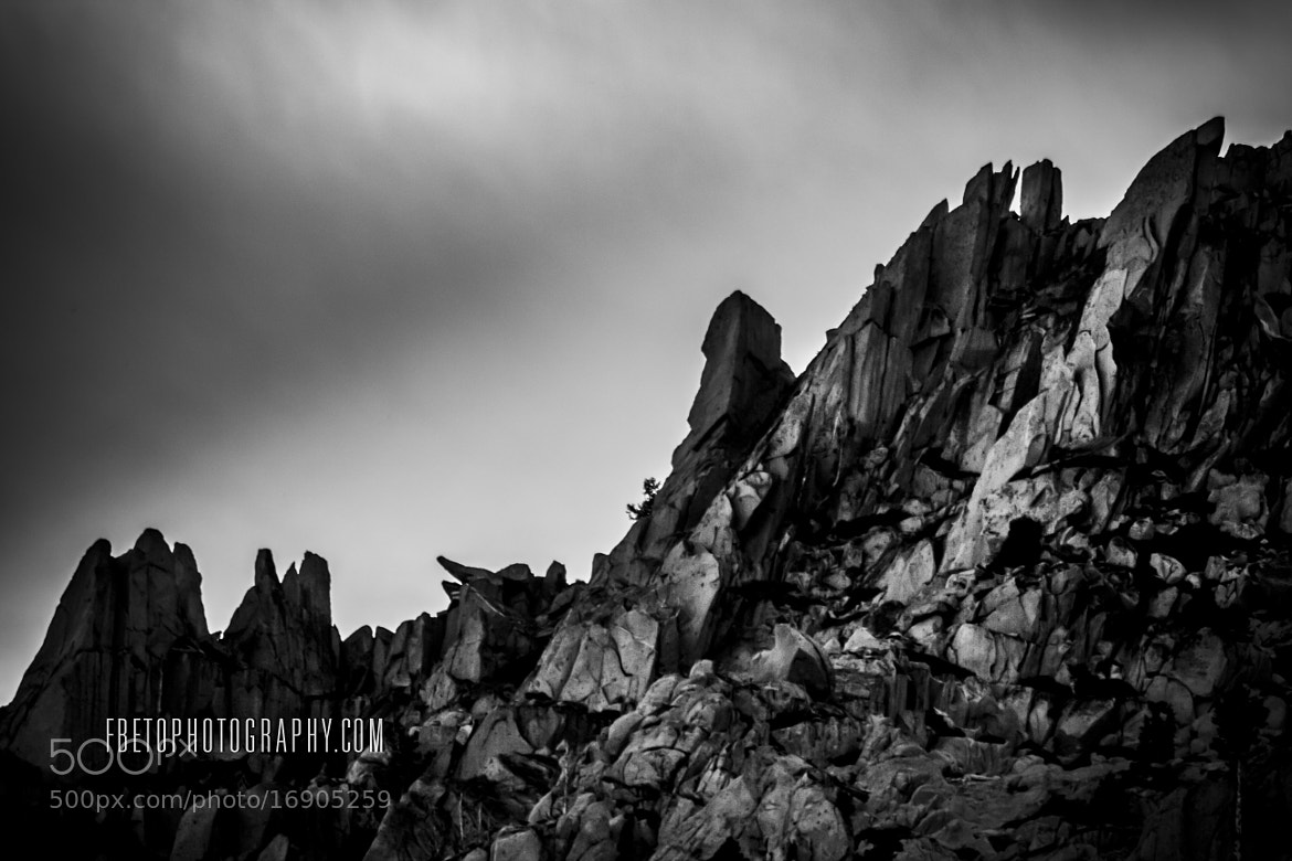 Photograph The wall by Fernando De Oliveira on 500px