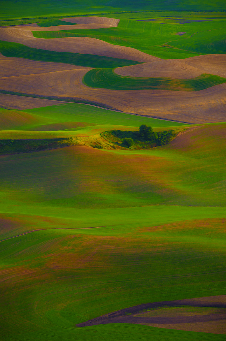 Photograph Layers and Hues by Ani Pandit on 500px