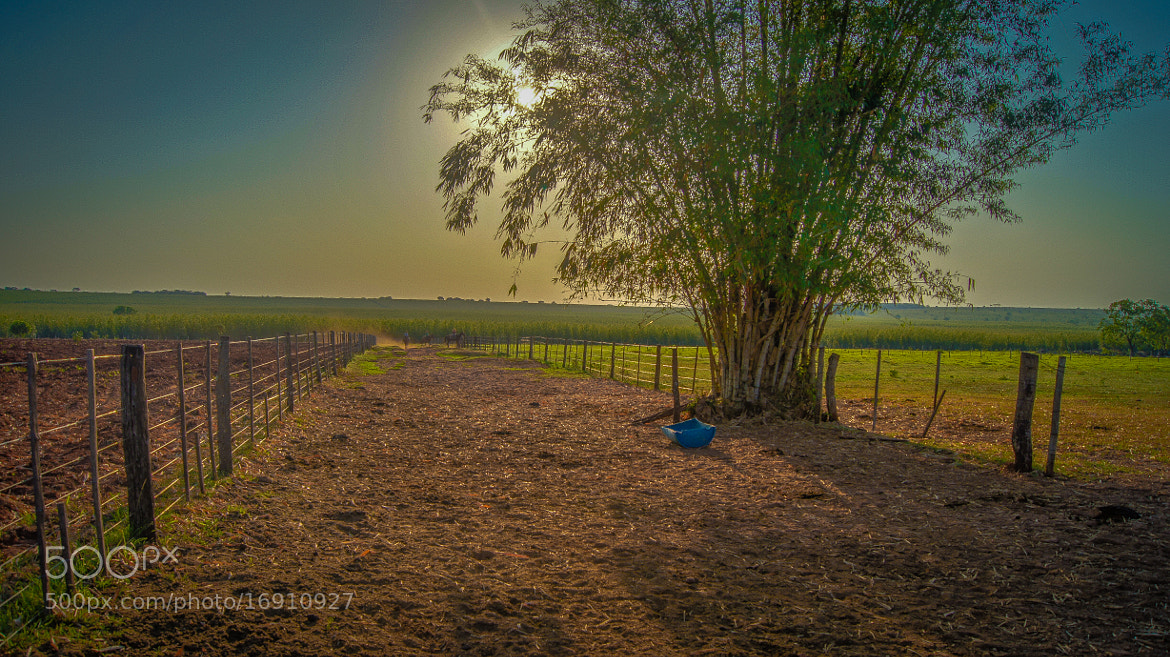 Photograph a fazenda.  by Roberto Manzanares on 500px