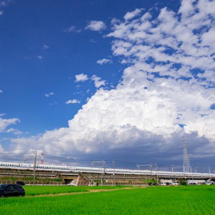 Summer of Japan