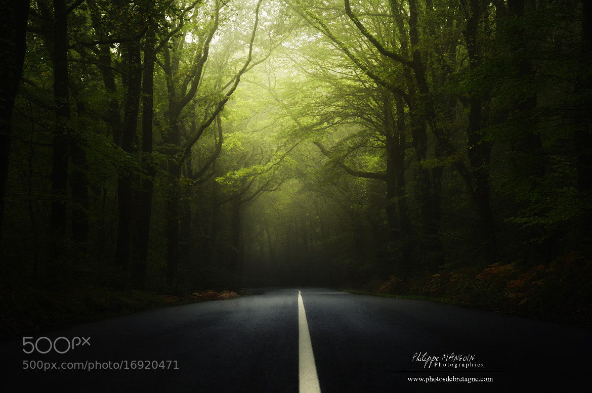 Photograph The road by Philippe MANGUIN on 500px