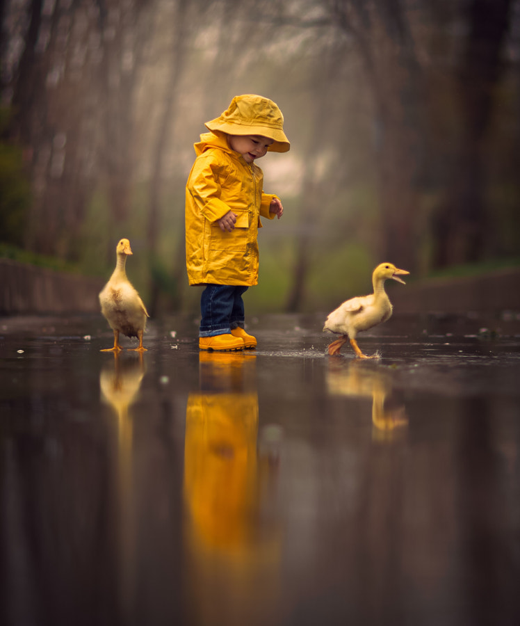 Puddles by Jake Olson Studios