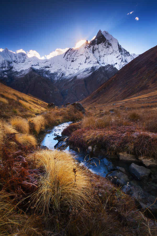 Relief by Dylan Toh & Marianne Lim