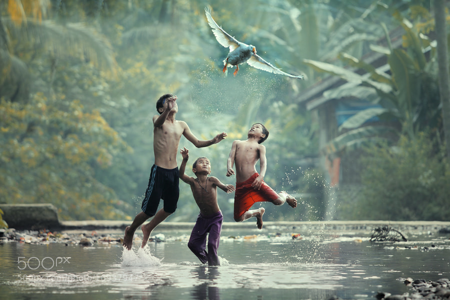 Photograph lets fly with me by taufik sudjatnika on 500px