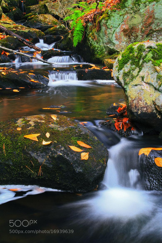 Photograph Cascades by Matt H on 500px