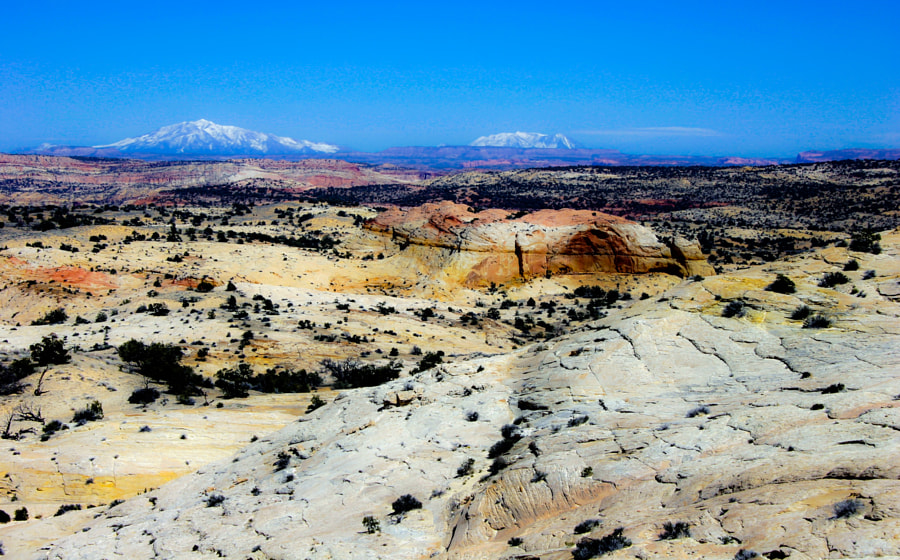 Border Utah and Colorado