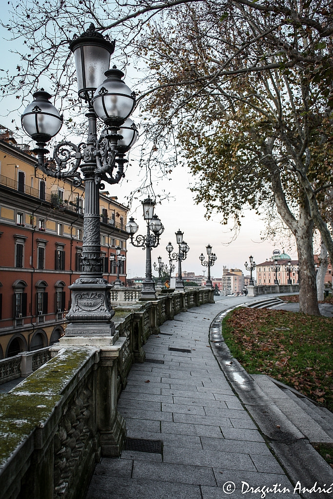 Photograph Late fall in Bologna by Dragutin Andric on 500px