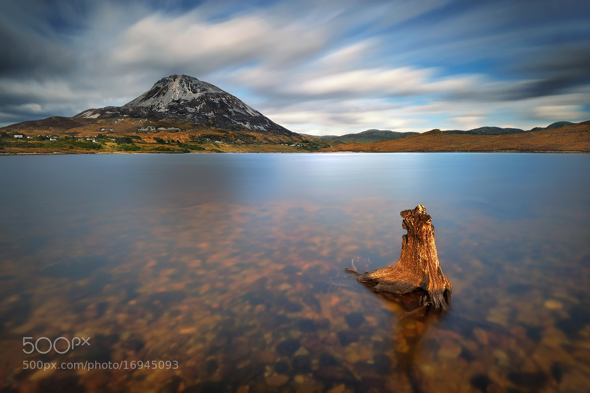 Photograph The aim... by Pawel Kucharski on 500px