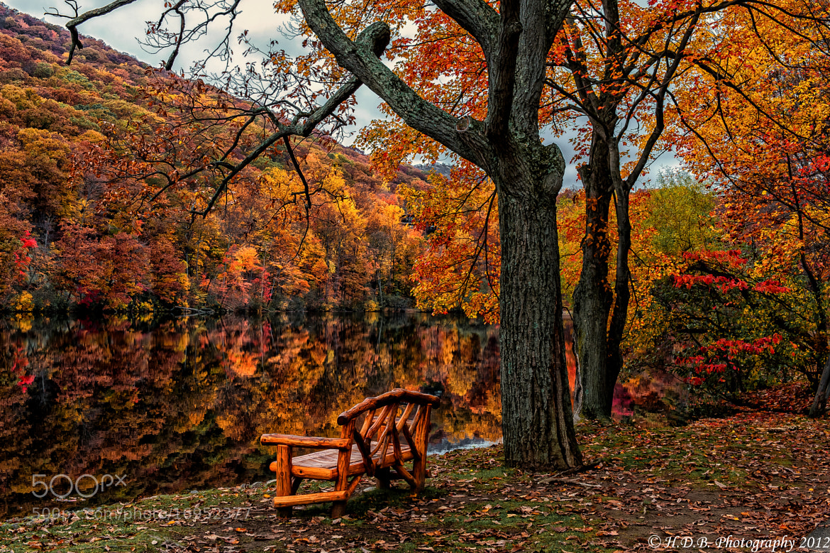 Photograph Fall In NY by Harold Begun on 500px