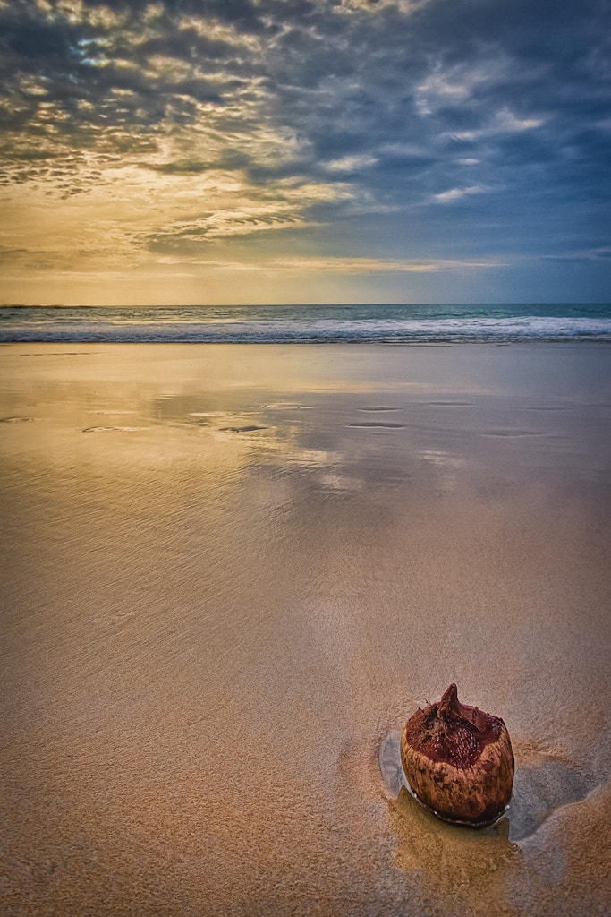 Photograph Washed Up by Eric Elberson on 500px