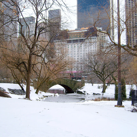 Snow in Central Park, Canon POWERSHOT SD550