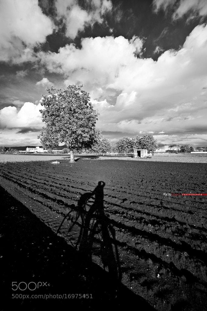 Photograph fotografando in bicicletta by PAOLO LIGGERI on 500px