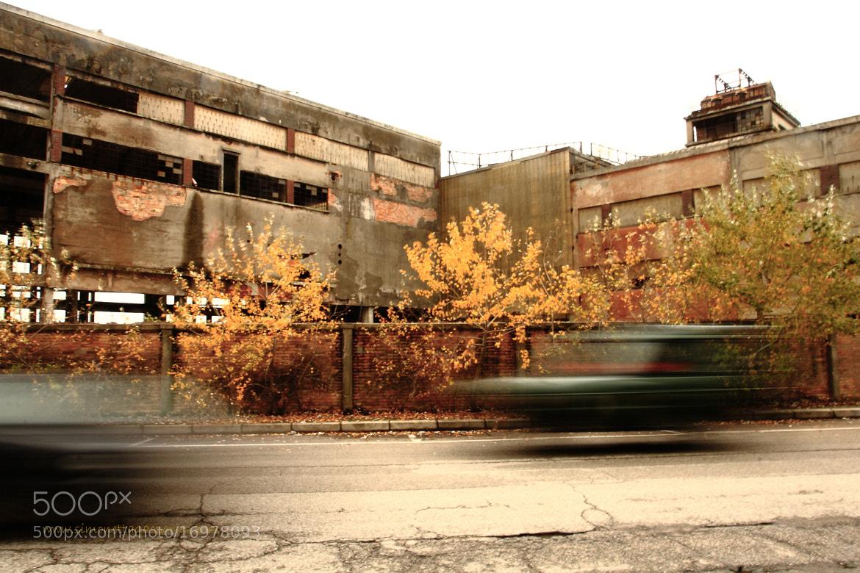 """Photograph """"in questo progresso scorsoio....."""" by Simonetta Gasparini on 500px"""