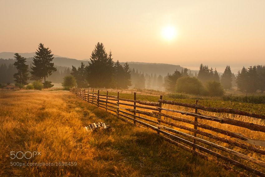 Photograph Misty morning by Petar Krusev on 500px