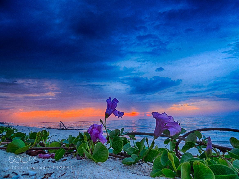 Photograph beach by Umesh Daundkar on 500px