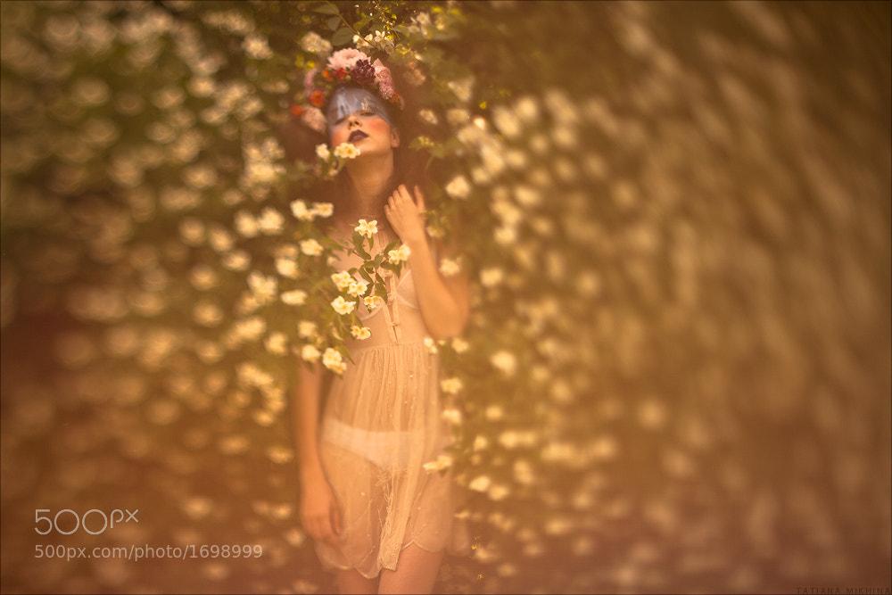 Photograph Jardin by Tatiana Mikhina on 500px