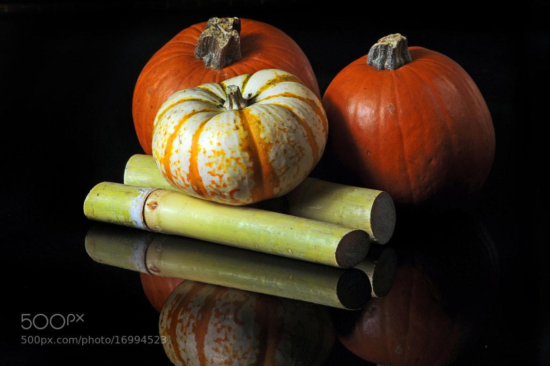 Photograph Pumpkins by Cristobal Garciaferro Rubio on 500px