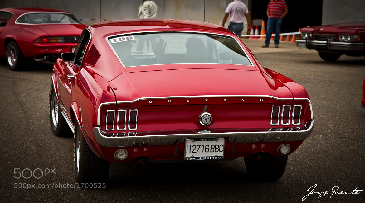 Photograph Ford Mustang's rear by Jorge Puente on 500px